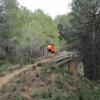 III Socovos Ibero Trail