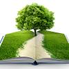 Convocan ayudas para actividades de educación ambiental por entidades privadas sin ánimo de lucro