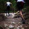 III Nerpio Juglans Trail