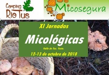 Jornadas micológicas en el Parque Natural de los Calares del Mundo y de la Sima
