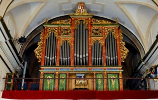 organo lietor