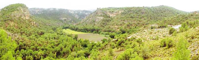 faria-biodiversidad