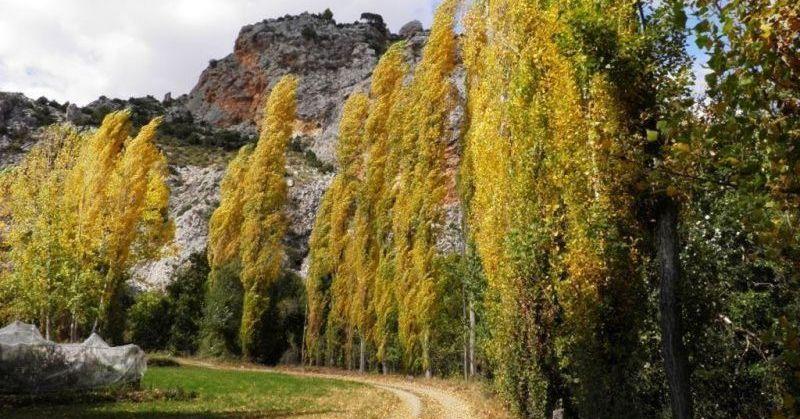 Paraje del Zarzalar. Nerpio. Sierra del Segura. Albacete