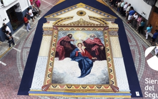elche-alfombras-tres