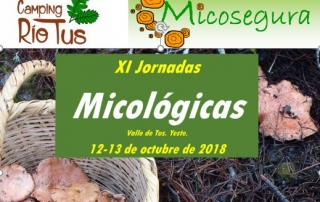 micologicas