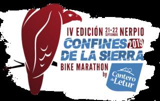 logo2019-2-1